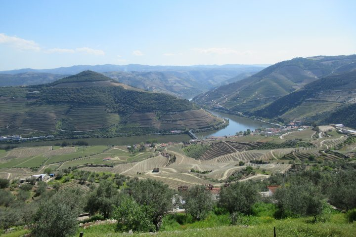 Douro Valley Summers: Three months of hell, great wine